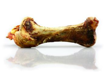 Ganzer Straußenknochen für Hunde vom Großhandel Pets Best