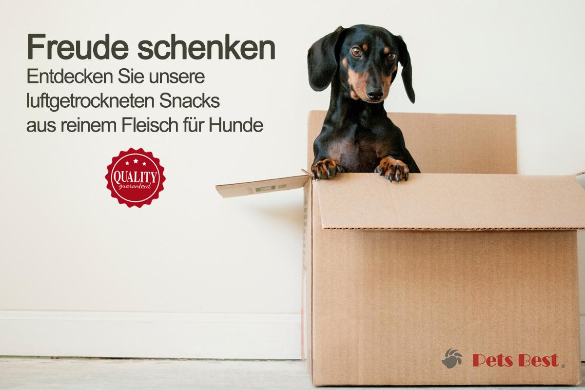 Pets Best tile homepage