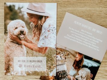 Flyer Pets Best Großhandel Hunde Kauartikel und Snacks